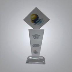 Kristal Plaket PL64