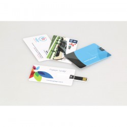 Kartvizit USB Bellek UB200